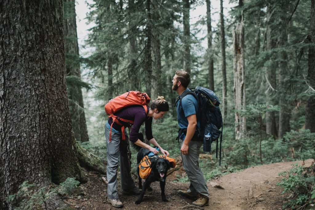 bride and groom with hiking gear and dog