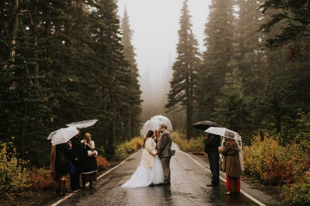 wide shot of ceremony in the road at hurricane ridge elopement
