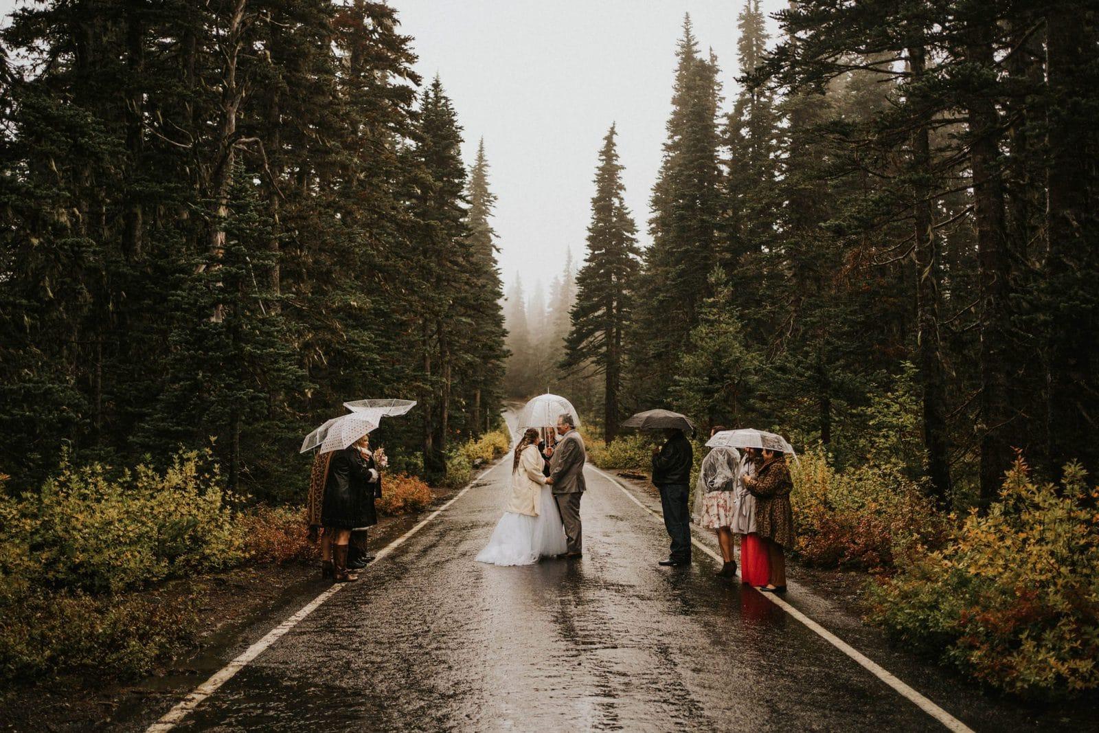 ceremony in the road at hurricane ridge elopement
